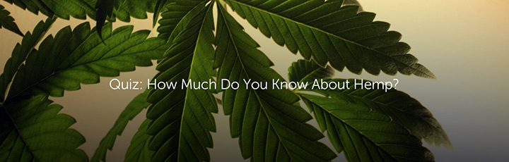 Quiz: How Much Do You Know About Hemp?