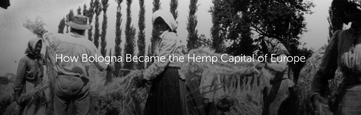 How Bologna Became the Hemp Capital of Europe